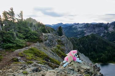 Fluttershy at Tolmie Peak, WA