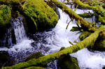 Natures Natural Waterscape