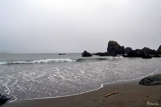 Summer Coastal Scape