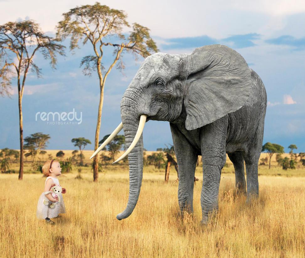 Wild Child - Ellamarie by remydarling