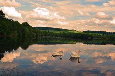 le lac des cygnes by DavidMnr