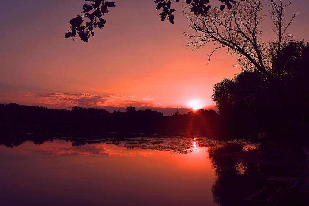 Good night nature by davidmnr on deviantart - Good night nature pic ...