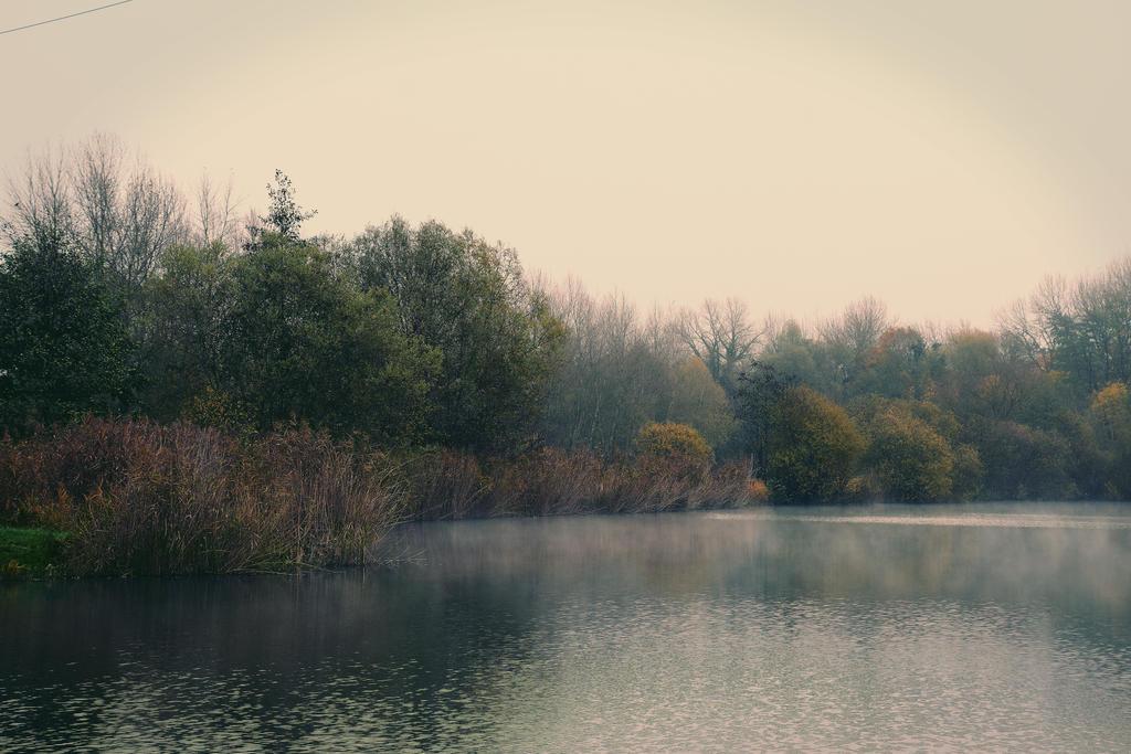 Un matin d'automne by DavidMnr