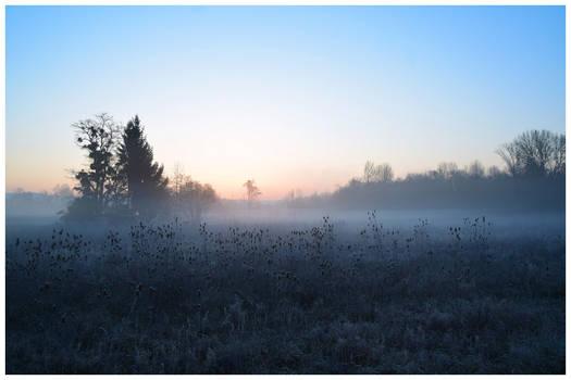 Un matin