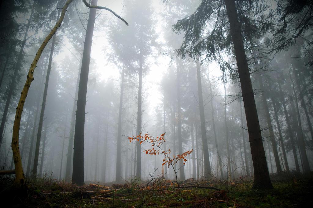 Underworld by DavidMnr