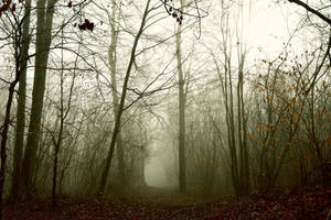 Reminiscence (2) by DavidMnr