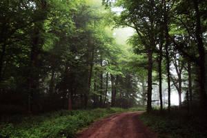 Le chemin by DavidMnr