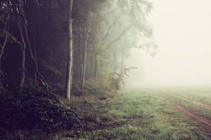 Il etait une fois l'automne by DavidMnr