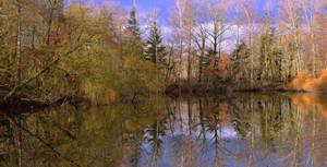 Miroir Hivernal