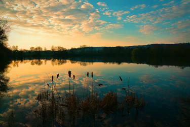 At the pond by DavidMnr