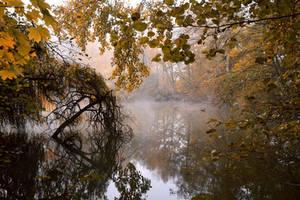 Matin d'automne by DavidMnr