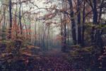 Memoires d'automne