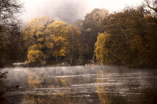Les silences de l'automne