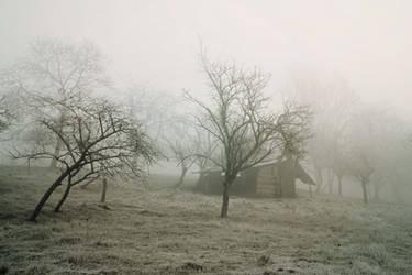 Refuge by DavidMnr