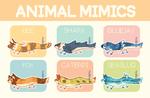[CLOSED] animal mimics noodles