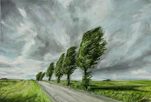 Wind by DarkHeartache
