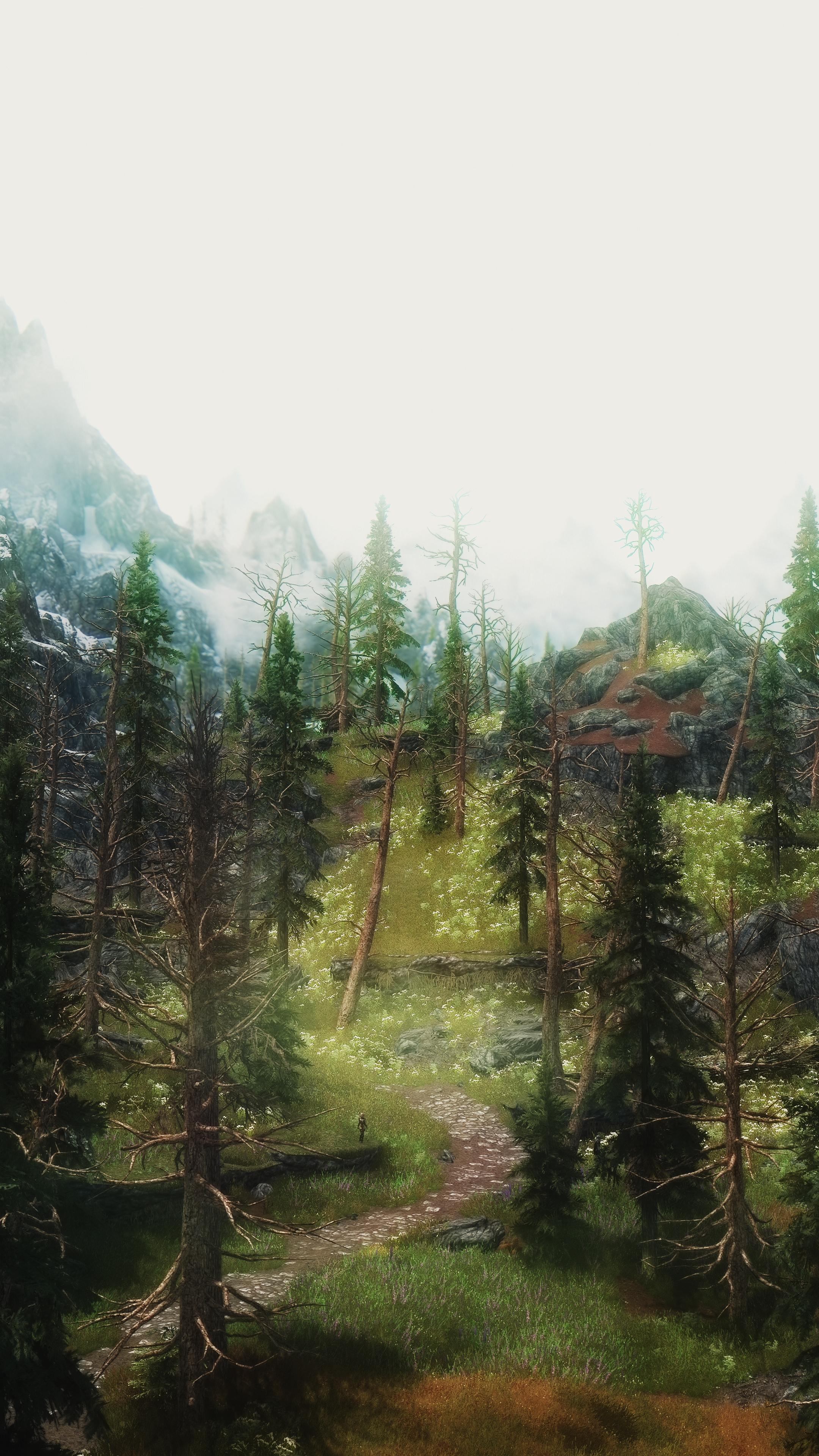 Skyrim - The road to Riverwood. by kaldaar