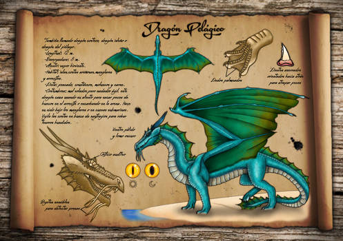 Dragon Pelagico - Pelagic Dragon Reference Sheet