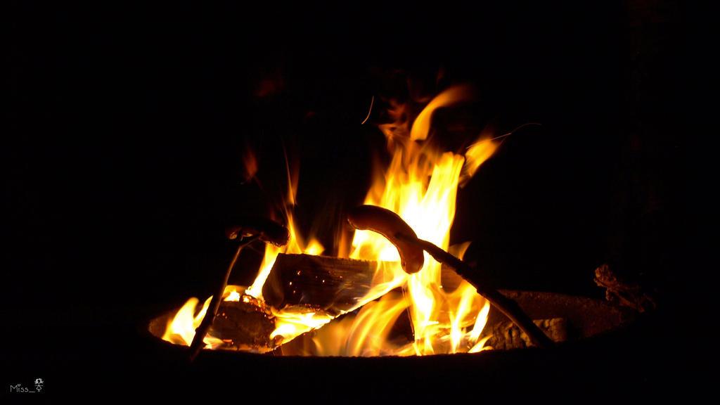 Campfire by MissTanuki