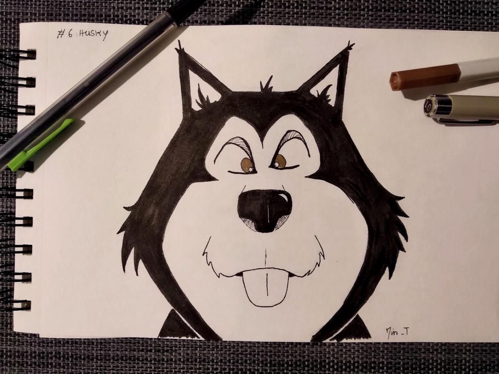 #06 - Husky