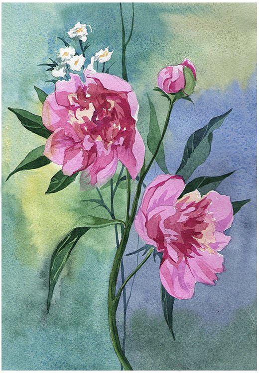 pink peonies by kosharik69