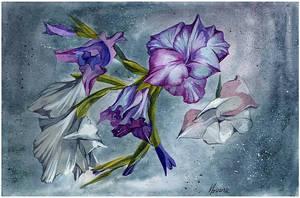 purple and white gladioli by kosharik69