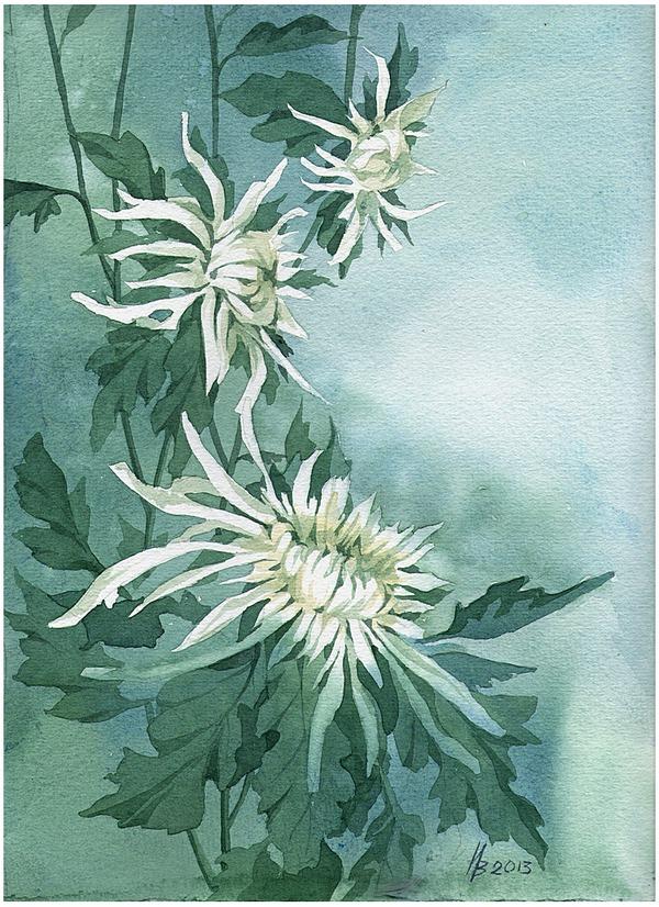 White on green by kosharik69