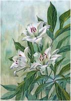 Lily and peony leaves by kosharik69