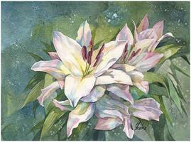 lilies by kosharik69