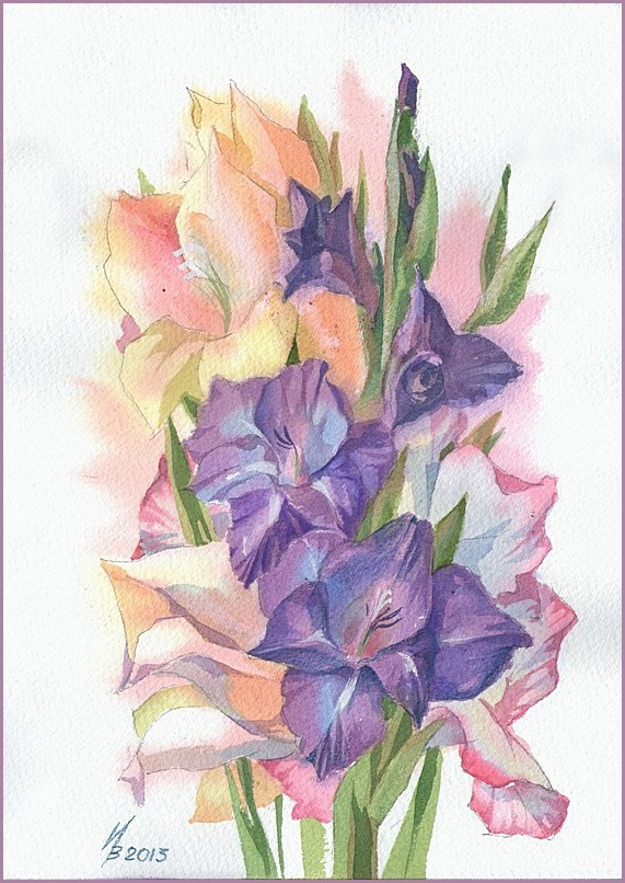 purple gladiolus by kosharik69