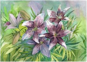 lily garden by kosharik69