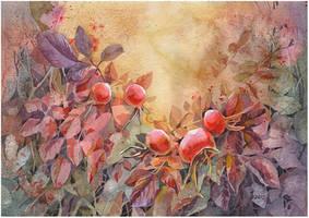 autumn wild rose by kosharik69