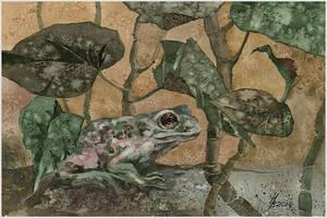 earthen toad