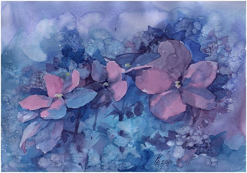 violets by kosharik69