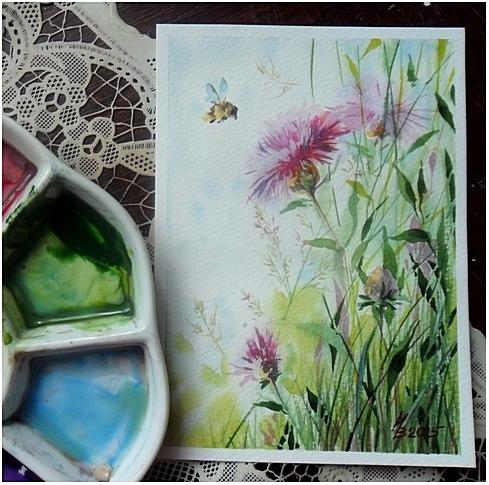 Lugovoi cornflower by kosharik69