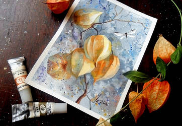 physalis and dragonfly