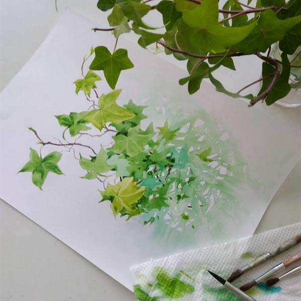 A branch of ivy by kosharik69