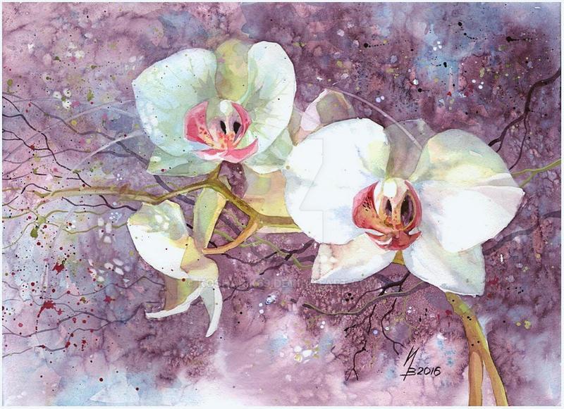 White orchid by kosharik69