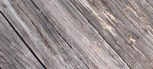 texture - wood 008