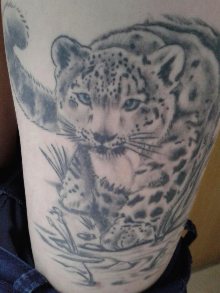 Winged Snow Leopard Pictures To Pin On Pinterest Tattooskid