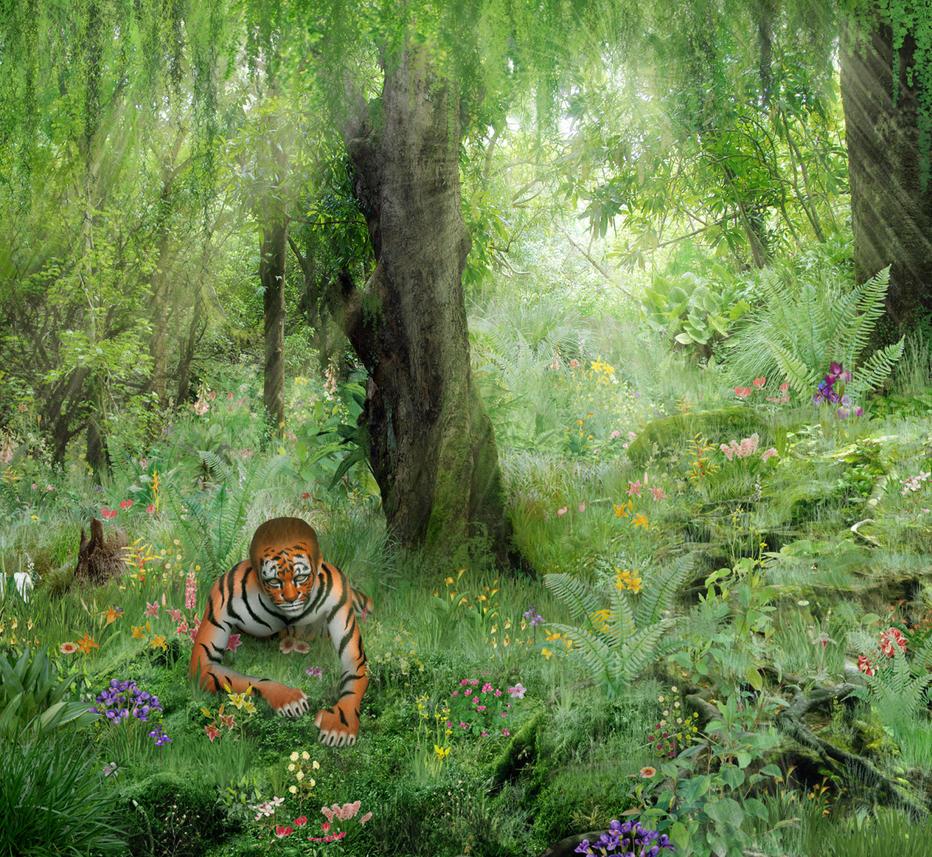 tiger in the jungle by yoklmn on deviantart. Black Bedroom Furniture Sets. Home Design Ideas