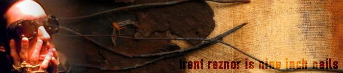 Trent Reznor 2 by luigineo
