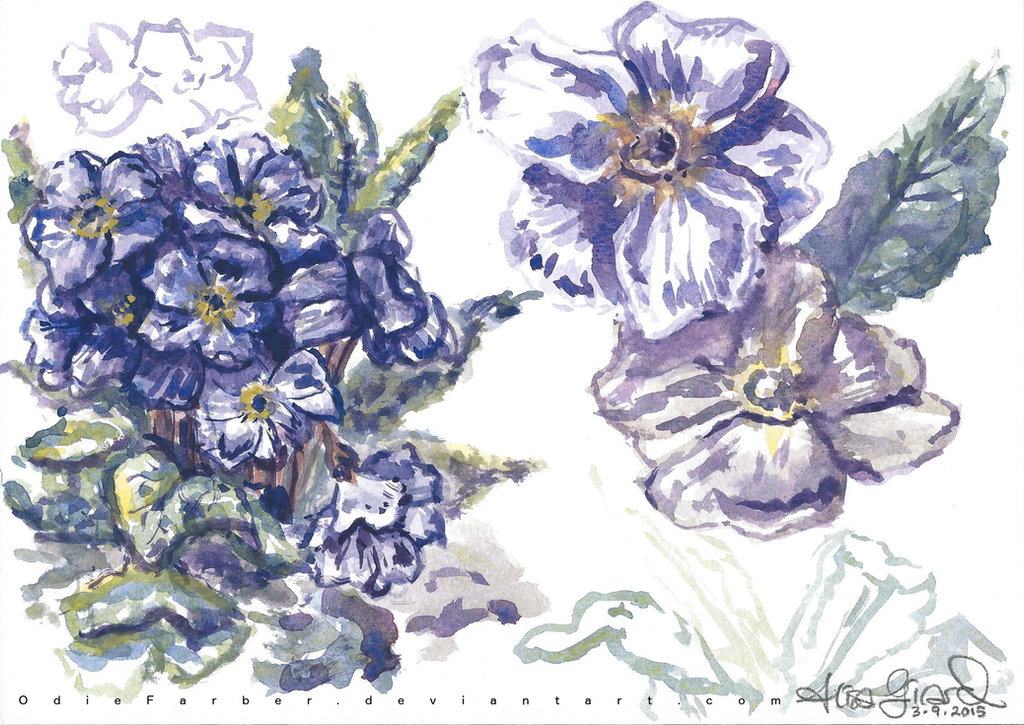 Watercolor Flowers by OdieFarber