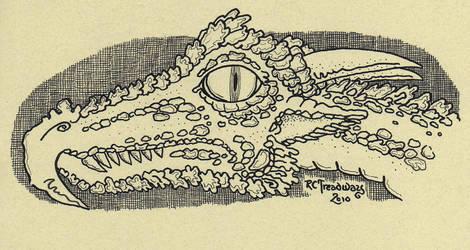 Sand Dragon by Zage56