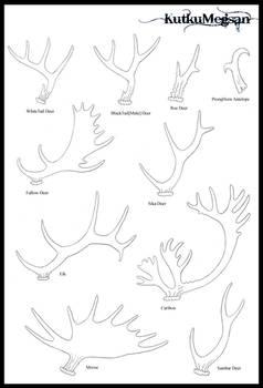 North American Antlers Basic Tutorial -KutkuMegsan