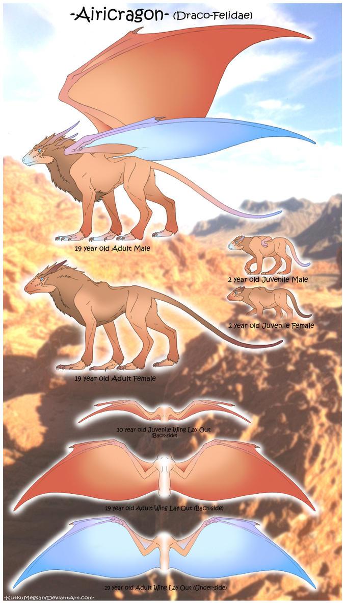 -Airicragon- (Draco-Felidae)  -KutkuMegsan- by KutkuMegsan
