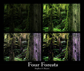 Four Forests by T3H-5T3V3