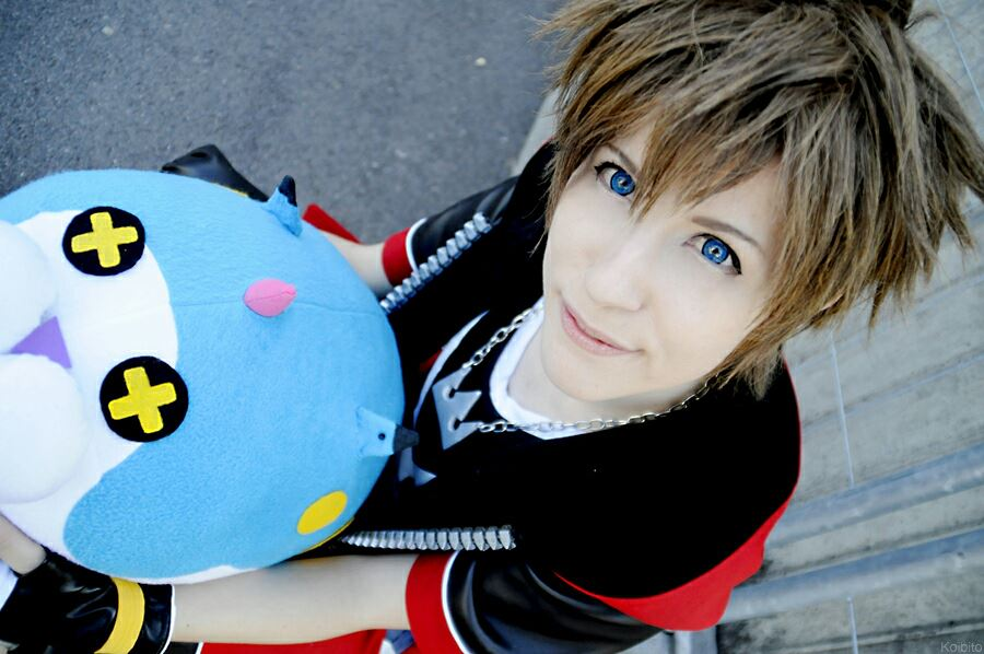 Wonder Sora Nyan! by Figgarow