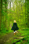 Into the woods - Lamento