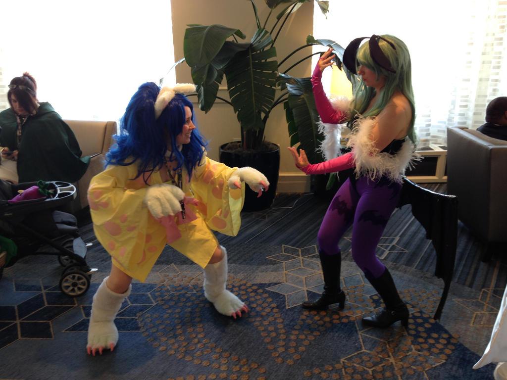 Cat fight by titanstargirl